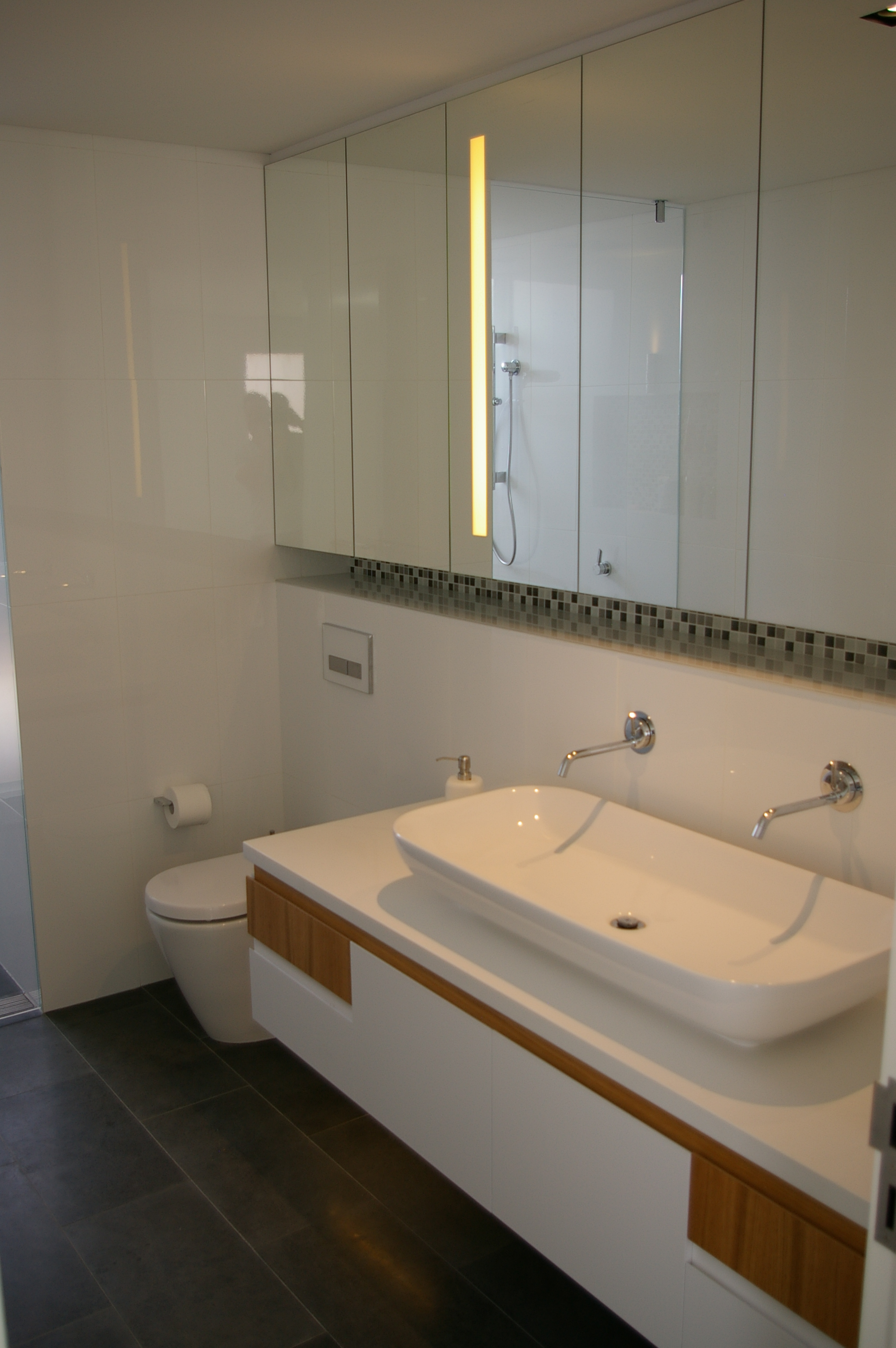 Residential mosman new build for Main bathroom designs